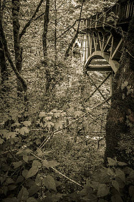 Photograph - Shepards Dell Bridge by Wes and Dotty Weber