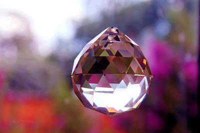 Photograph - Sherbet Crystal Teardrop by Susan Vineyard