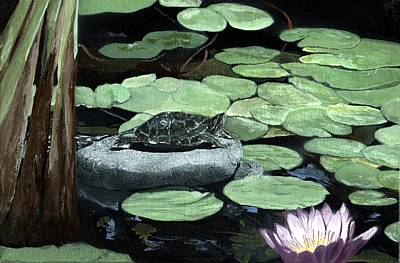 Painting - Sherman Garden Turtle by Charles Parks