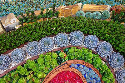 Photograph - Sherman Gardens Study 44 by Robert Meyers-Lussier