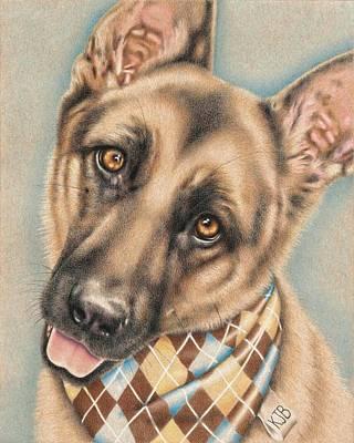 Drawing - Sherman The German Shepherd by Karrie J Butler