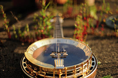 Banjo Photograph - Sherridan Banjo by Dyker_the_horse_1976