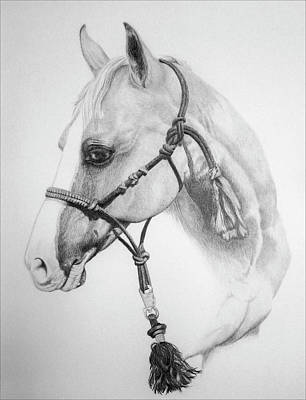 Barrel Racing Drawing - Shes The Gentle One by Tracy L Teeter
