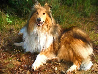 Switzerland Mixed Media - Shetland Dog by Garland Johnson