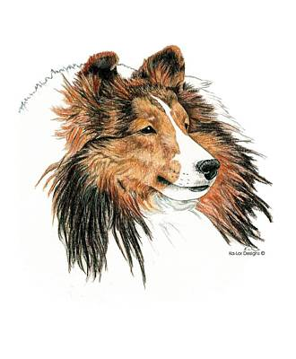 Sheepdog Drawing - Shetland Sheepdog, Sheltie Sable by Kathleen Sepulveda
