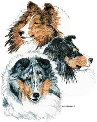 Sheepdog Drawing - Shetland Sheepdogs by Kathleen Sepulveda