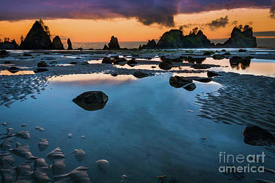 Olympic Peninsula Photograph - Shi-shi Beach Mystique by Inge Johnsson