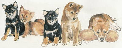 Sporting Mixed Media - Shiba Inu Puppies by Barbara Keith