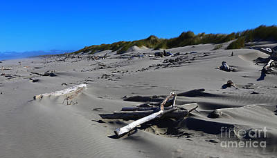 Photograph - Shifting Sands by Marty Fancy
