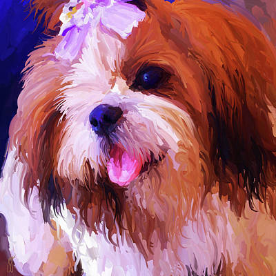 Shih Tzu Painting - Shih Tzu - Square by Jai Johnson