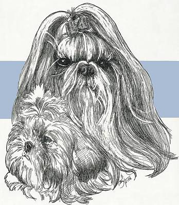 Mixed Media - Shih Tzu And Pup by Barbara Keith