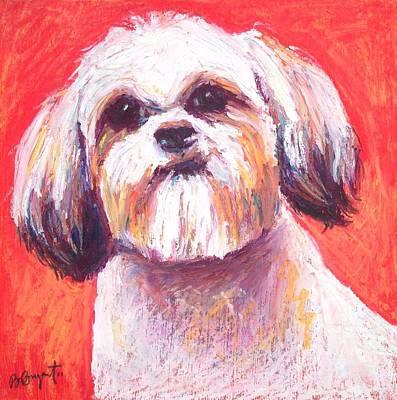 Shih Tzu Painting - Shih Tzu by Bethany Bryant