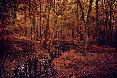 Photograph - Shiloh Creek 4 by Jai Johnson