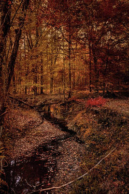 Shiloh Creek 5 Art Print by Jai Johnson