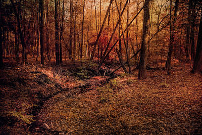 Photograph - Shiloh Creek 6 by Jai Johnson