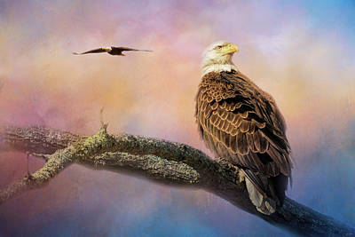 Photograph - Shiloh Eagles In Spring by Jai Johnson
