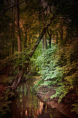 Photograph - Shiloh Stream 2 by Jai Johnson