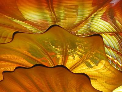 Photograph - Shimmer In Gold by Carolyn Jacob