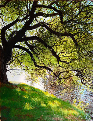 Painting - Shimmering Reflections by David Bottini