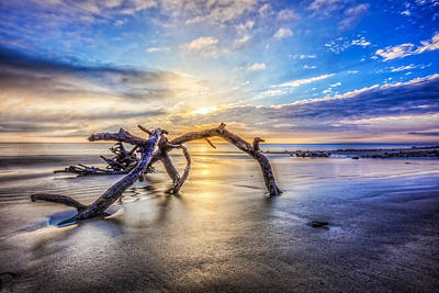 Driftwood Beach Fog Wall Art - Photograph - Shimmering Sands by Debra and Dave Vanderlaan