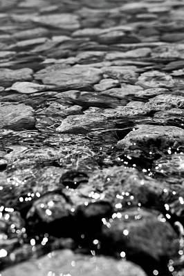 Shimmering Waters In Spring Art Print