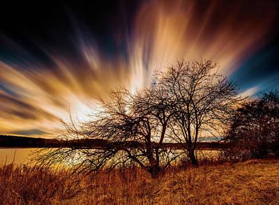 Digital Art - Shine A Light by Michael Damiani