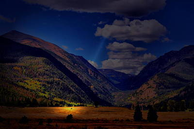 Photograph - Shine Down by Emily Stauring