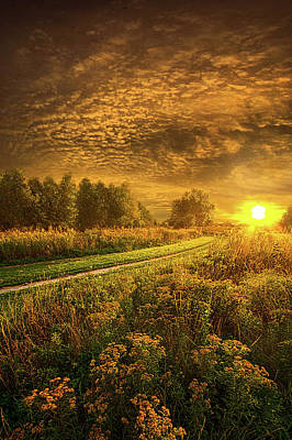 Unity Photograph - Shine Down On Another Day by Phil Koch