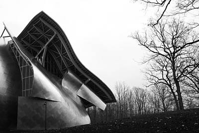 Shine On Gehry At Bard College New York State Art Print by Jane McDougall