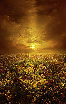 Unity Photograph - Shine On Me by Phil Koch