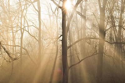 Beam Digital Art - Shine On Through by Bill Cannon