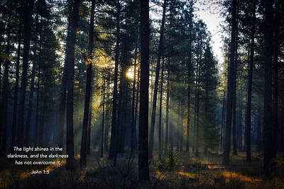 Photograph - Shines In Darkness  by Lynn Hopwood