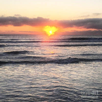 Photograph - Radiance by LeeAnn Kendall