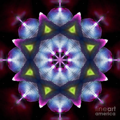 Photograph - Shining Star Mandala by Yulia Kazansky