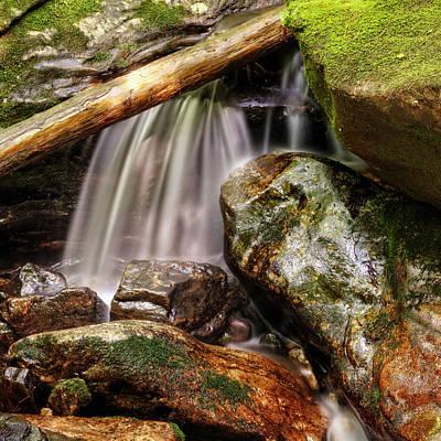 Photograph - Shiny Rocks by Greg Mimbs