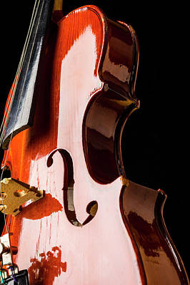 Photograph - Shiny Violin by Garry Gay