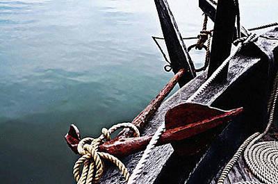 Photograph - Ship Anchor by Rena Trepanier