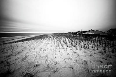Photograph - Ship Bottom Dunes by John Rizzuto