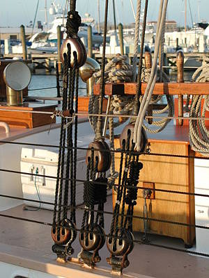 Photograph - Ship's Rigging by Nancy Taylor