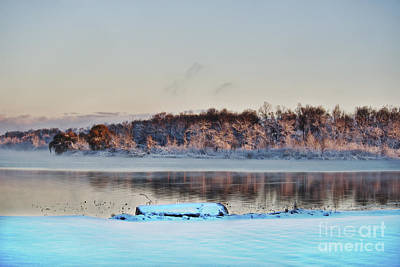 Photograph - Shipshewana Lake November Dawn by David Arment