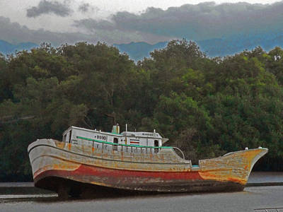 Photograph - Shipwreck 1 by Ron Kandt