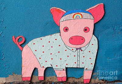 Photograph - Shirted Rainbow Pig by Ethna Gillespie