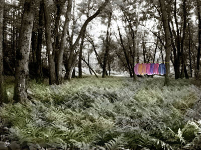 Photograph - Shirts In A Floodplain Forest by Wayne King