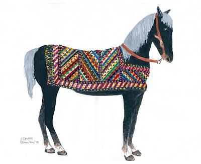 Shirvan Pony Art Print