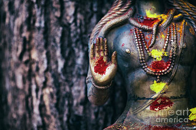 Photograph - Shiva Blessing by Tim Gainey