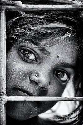 Photograph - Shivamas Stare by Tim Gainey