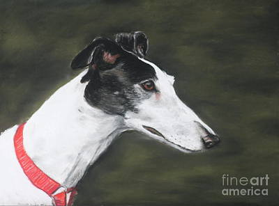 Rescued Greyhound Painting - Shobe by Charlotte Yealey