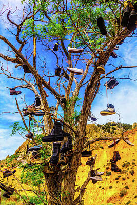 Shoe Tree Art Print by Garry Gay