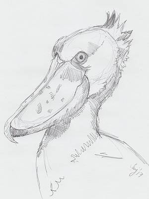 Drawing - Shoebill Bird Drawing by Mike Jory