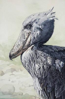 Shoebill Stork Portrait Art Print by Emmanuel De Guzman